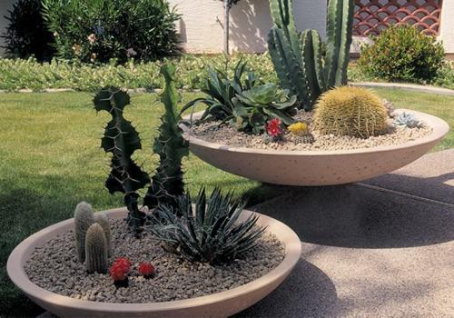 landscaping - plant bowls